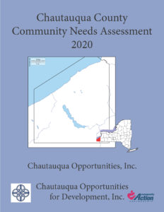 Community Needs Assessment 2020